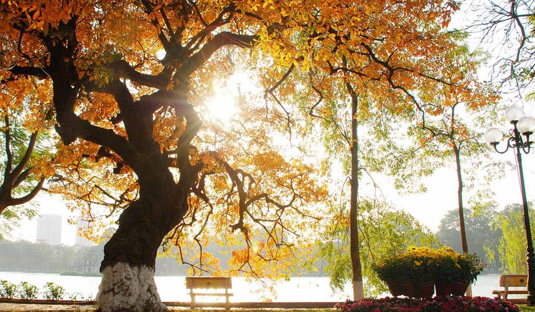Ảnh đẹp Hà Nội mùa thu