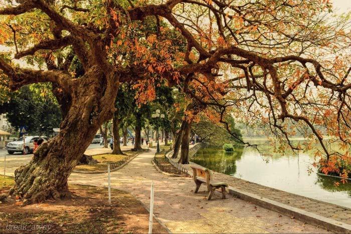 Ảnh đẹp mùa thu Hà Nội